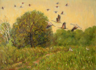 Картина полет птиц